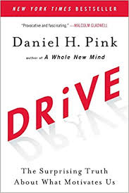 Drive: The Surprising Truth About What Motivates Us by Daniel Pink